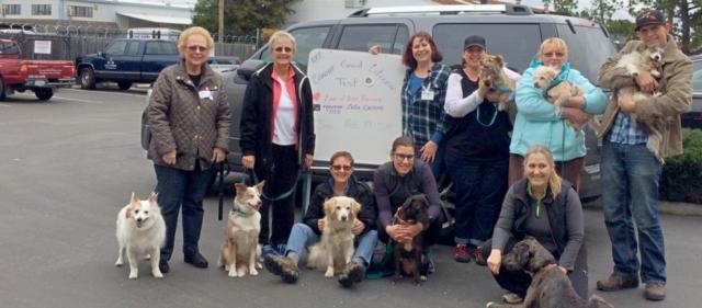 Good Canine Citizen workshop
